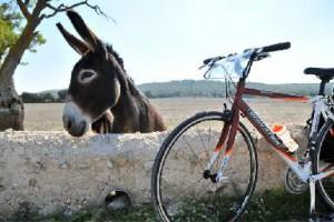 bici-in-valle-d-itria