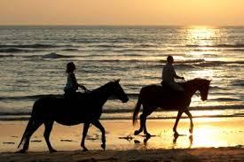 passeggiate-a-cavallo-valle-d-itria